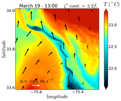 SST of a cold submesocale filament